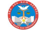 Jobs in Addis Ababa